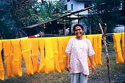 Chonabot Silk, Drying