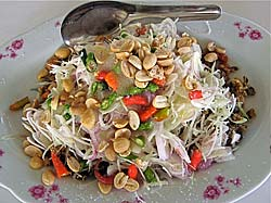 Baby Clam Salad