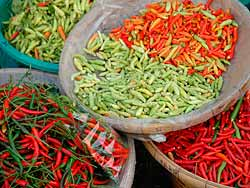 Chillies for Sale