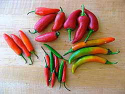 Thai Spicy Hot Flavors