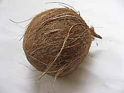 Brown Coconut