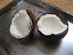 Two Coconut Halves
