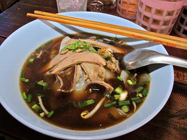 Stewed Duck Soup Noodles
