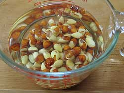 Gingko Nuts